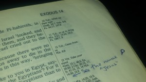 Exodus my Bible